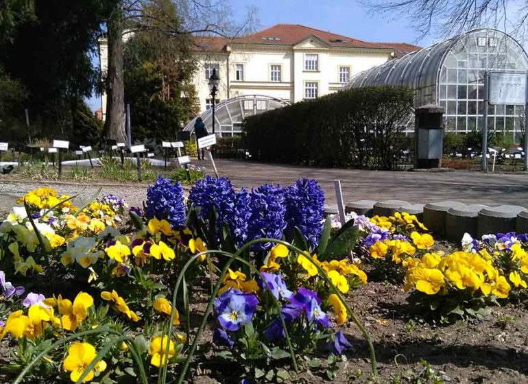 botanická zahrada PřFMU