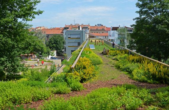 otevrena-zahrada