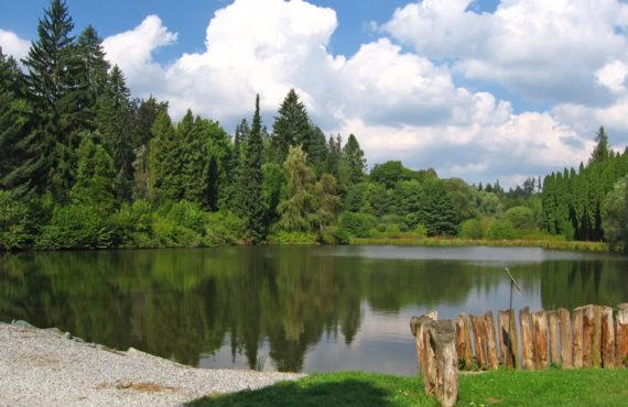 arboretum-krtiny
