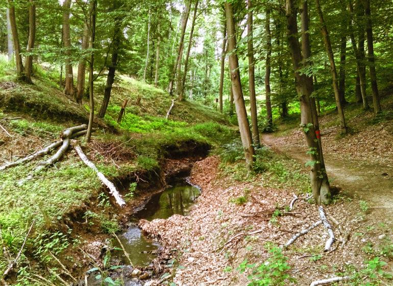 augspersky-potok