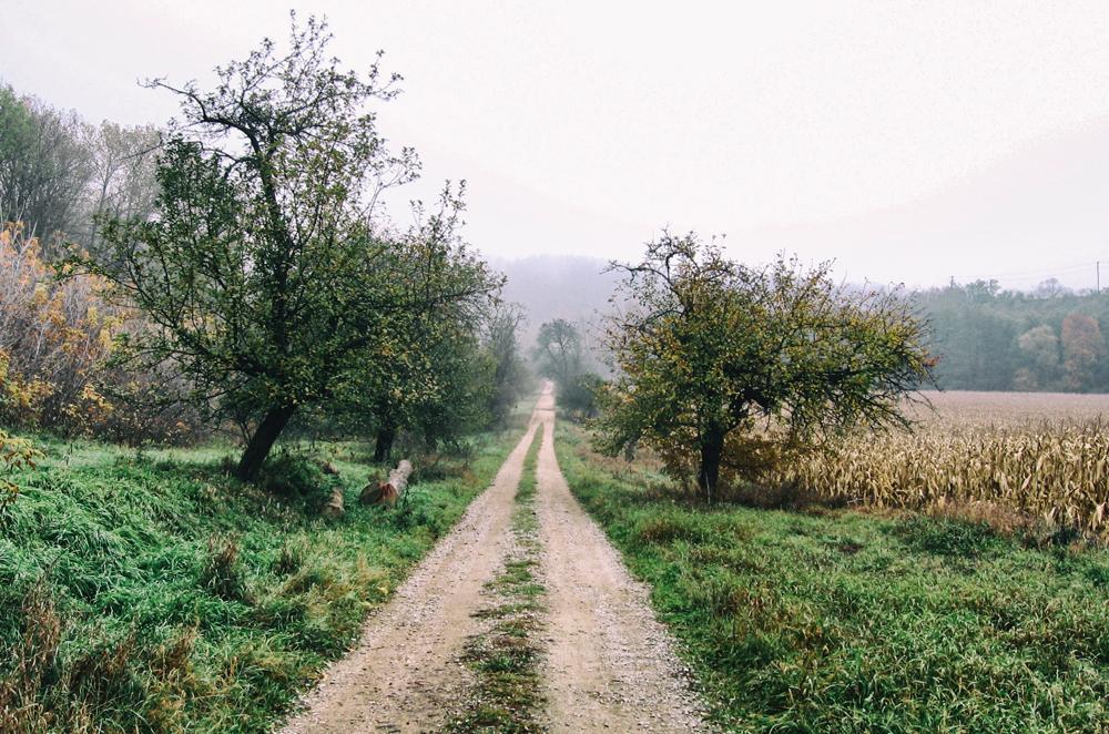 moravsky-krumlov-cesta