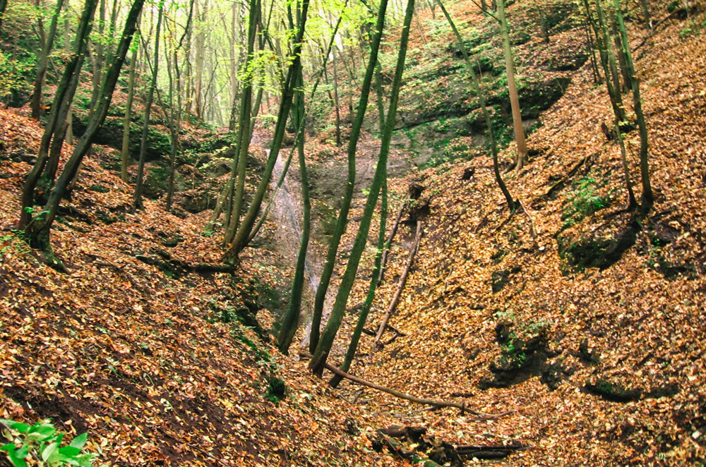 vodopad-moravsky-krumlov