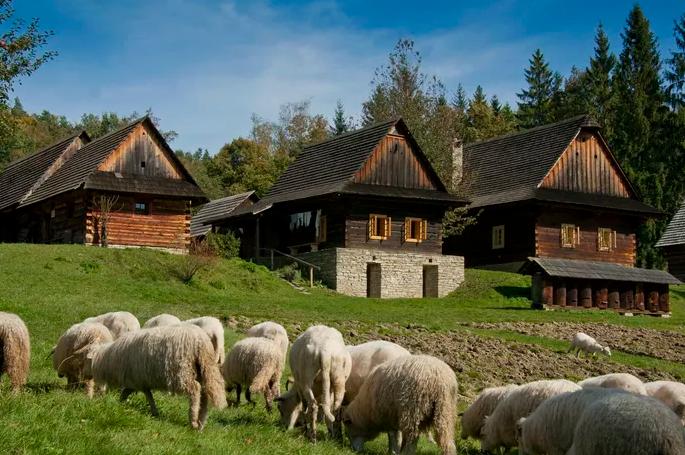 foto: nmvp.cz